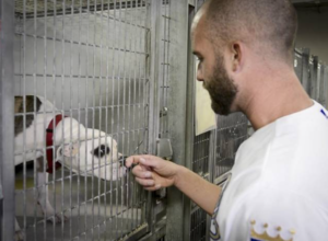 Royals pitcher Danny Duffy at KC Pet Project animal shelter